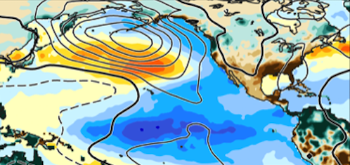 Observed ocean-atmosphere anomaly patterns during multi-year La Niña event