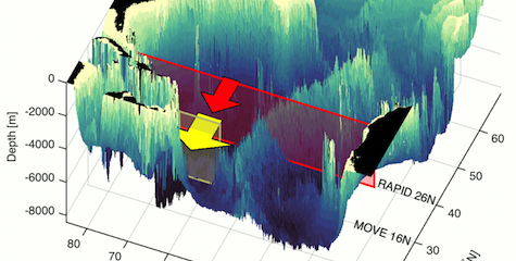 RAPID and MOVE arrays in the Atlantic Ocean