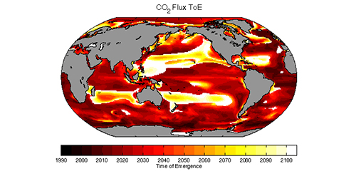 Global ocean carbon sink