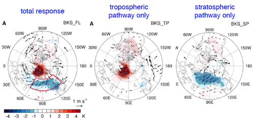 Response in wintertime surface air temperature (color shadings) and surface wind (vectors) to imposed RCP8.5 sea ice loss over the Barents-Kara sea (BKS)