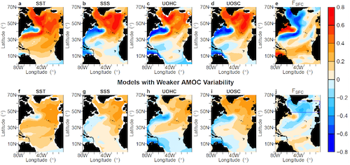 AMOC and AMV variability in different models
